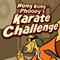 Hong Kong Phooey's Karate…
